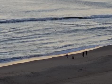 oceanfrontsunsetwatchers